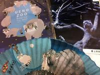 上野動物園 8月9日 マヌルネコ - お散歩ふぉと