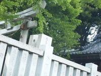 神社の屋根は入母屋だった。。 - 一場の写真 / 足立区リフォーム館・頑張る会社ブログ