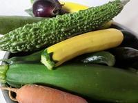採りたて野菜 - 風路のこぶちさわ日記