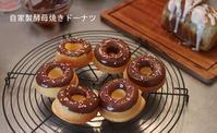 自家製酵母焼きドーナツとプライベートレッスンのお知らせ - 自家製天然酵母パン教室Espoir3n(エスポワールサンエヌ)料理教室 お菓子教室 さいたま