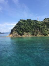 ダイビング日和!大島海峡ダイビング - 奄美大島 ダイビングライフ    ☆アクアダイブコホロ☆