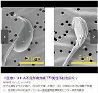 DHA不足が視力低下や男性不妊を招く? -  個食・素食・少食