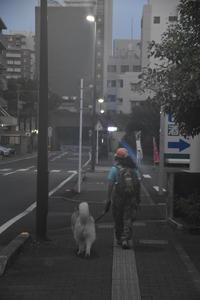 夏ニッコニコ♪ (^o^) - 犬連れへんろ*二人と一匹のはなし*