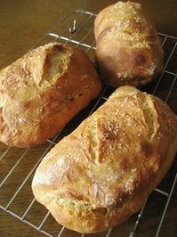 ディンケル小麦の塩パン - slow life,bread life