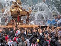 富岡八幡宮のお祭り - Taro's Photo