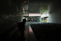 奈義現代美術館とインスタ女子 - 花と小鳥の図鑑風