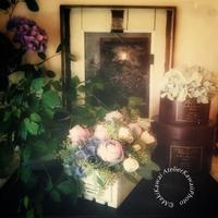 Le vase*15th Anniversary コラボイベント第二弾『人気フォトグラファー川合麻紀先生によるお花を美しく撮るスマホレッスン』 - Le vase*  diary 横浜元町の花教室