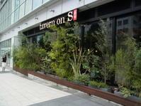 新宿ニューマン、tavern on S<es>で大人数ランチ会 - おいしいもの大好き!