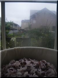 小豆いっぱい - まさかり半島日記