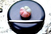 和菓子 - カエルのバヴァルダージュな時間