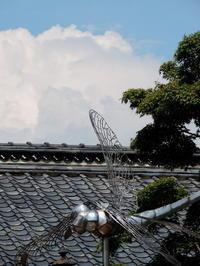 長野そぞろ歩き:小布施の夏 - 日本庭園的生活