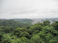 横浜市立金沢動物園 8月12日 - お散歩ふぉと