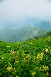 霧に包まれ - 風の香に誘われて 風景のふぉと缶