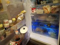 冷蔵庫がこの猛暑の中故障しました - スポック艦長のPhoto Diary