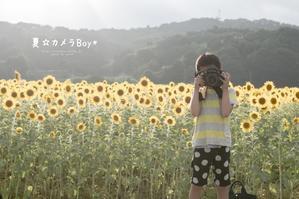 夏☆カメラBoy* - ココロハレ*