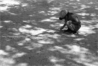 木陰の遊び - りゅう太のあしあと