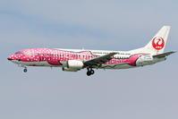 ピンクのさくらジンベエ - 南の島の飛行機日記