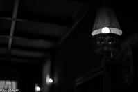 Lamp - Gomazo's slow life - take it easy