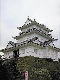 Japanese ninjaを求めて小田原城へ - 噴水キャバレエ