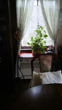窓辺にレッドレオナルドダヴィンチ - バラの庭でお茶をどうぞ