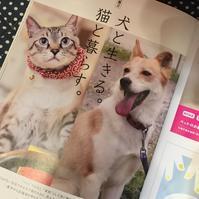 O.tone [オトン]vol106 「犬と生きる。猫と暮らす。.. - Doggie Do!! / good dog and hello cat !!