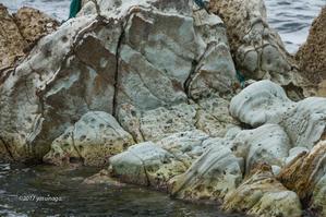 海水浴 - 幸宗の徒然写真