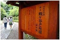 殿ヶ谷戸庭園 -  one's  heart