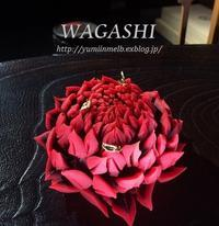 WAGASHI is the New Black - メルボルン奮闘日記2