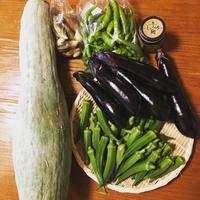 野菜と作り置き。 - やまごや