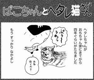 8月14日(月) - 阪神守護天使・今日のおちちゃん