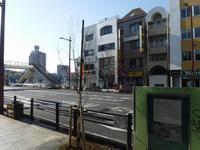 泉町広小路と柳 その3 柳の木が植樹されたのだが・・・ - みとぶら