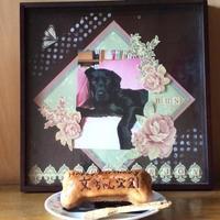 HAPPY☆BIRTHDAY & うちの子記念日 - Talklab☆ニコのちゅーす!
