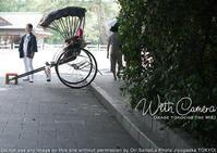 カメラが恋する伊勢志摩:ジリジリ焦げた夏が恋しい - 東京女子フォトレッスンサロン『ラ・フォト自由が丘』-写真とフォントとデザインと-