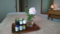花の少ない時期に咲く貴重なバラ - 「旅とアロマのナビゲーター」     アロマセラピストまえだゆーこのブログ