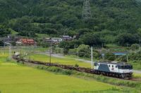 お盆の貨物 □____■ - 山陽路を往く列車たち