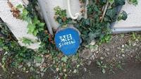 松本 - 笠間市 ともべ幼稚園 ひろばの裏庭<笠間市(旧友部町)>