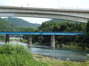 『夏水仙(ナツズイセン)や臭木(クサギ)の花の咲く川沿いの道~』 -