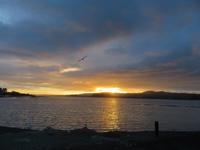 やっと間欠泉 - いい旅・夢Kiwi スカイキウィの夢日記