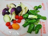 お野菜収穫 - NATURALLY