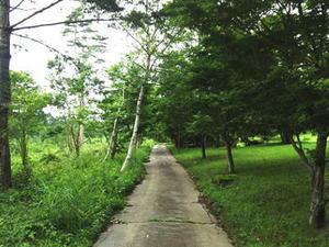 清里高原は記憶の中に・・・。 - ブログ「一般道各駅停車の旅」