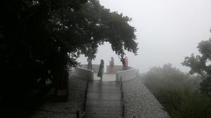 霧中の散歩道~~`☆・・゚☆、。・。・・゚びわ湖バレイ8月15日 -