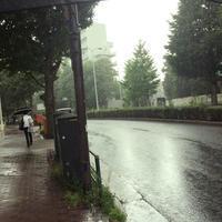 雨も・・いいかもね。 - 00aa恵比寿美容室  Hana★癒し系ヘアサロン★《ヘアー・ハナ》