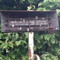 深谷のTe'cachetteさんでランチ - ゆきなそう  猫とガーデニングの日記