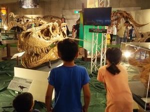 「ギガ恐竜展2017」と、生物進化の研究 - 谷岡隆(たにおかたかし) 習志野市議会議員