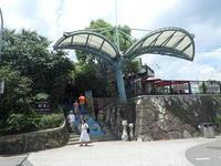 7月台湾旅:猫空「四哥の店」で茶葉料理♪ - 渡バリ病棟