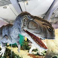 7月29日メガ恐竜展2017 - ドックの写真掲示板 Doc's photo