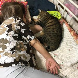 帰って来たら爆睡してた - ぶつぶつ独り言2(うちの猫ら2017)