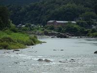 『近代化産業遺産の長良川発電所と赤芽槲(アカメガシワ)の雌花・・・』 - 自然風の自然風だより