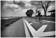 cyclist - BobのCamera