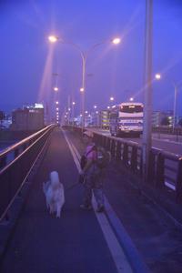定番の朝んぽ (^o^) - 犬連れへんろ*二人と一匹のはなし*